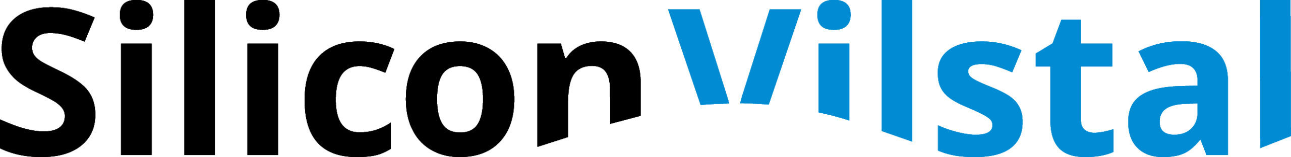 Logo Silicon Vilstal